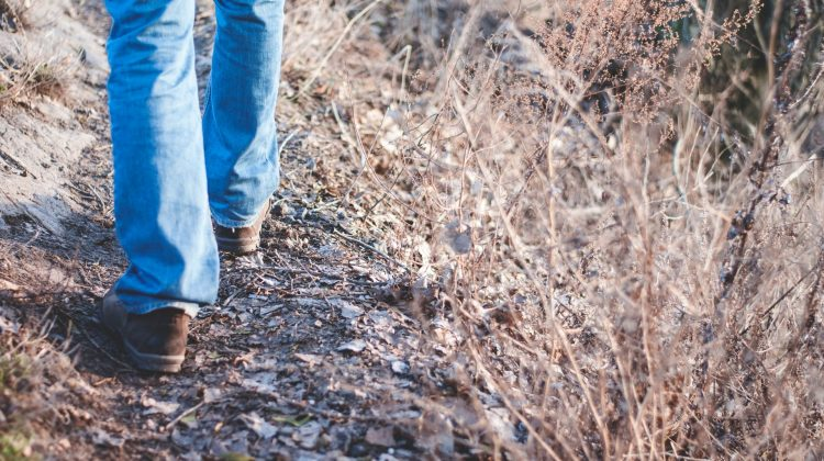 The best shoes for African safari must be comfortables and very light